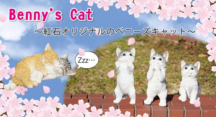 bennyscat 猫 キャット